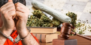 Drug Possession Charges Facts: Specialized Drug Courts